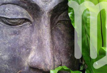 Meditation für die Jungfrau, ASTRORBIS